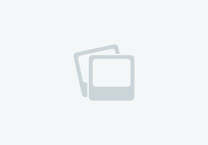 Grillo FD 13.09 4WD – used collecting front mower for sale in United Kingdom