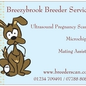 Animal Ultrasound Pregnancy Scanning, Microchipping, Mating Assis...