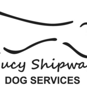Lucys Dog Services, Clevedon - Dog Walking, sitting and much more