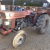 Massey Ferguson 165... Swindon