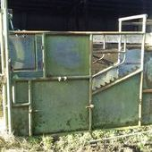 cattle crush for sale