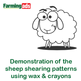 How to pattern a sheep for shearing using wax crayons