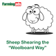 How to shear sheep the Woolboard Way