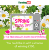 Spring Close-Up Photo Competition