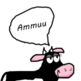 "The cow goes ""Ammuu"" - How do farm animals sound around the world?"